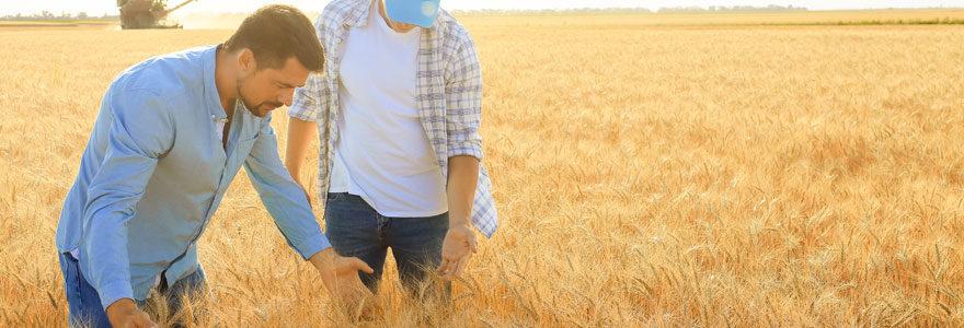 Les agriculteurs
